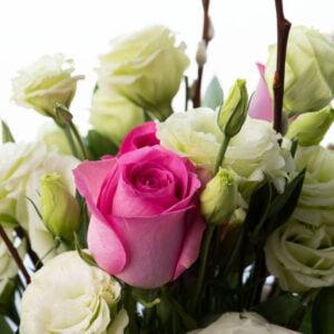Salix Bouquet