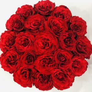 Gorgeous Red Rose Box